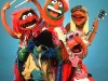 The Muppet Show->Dr. Teeth and The Electric Mayhem